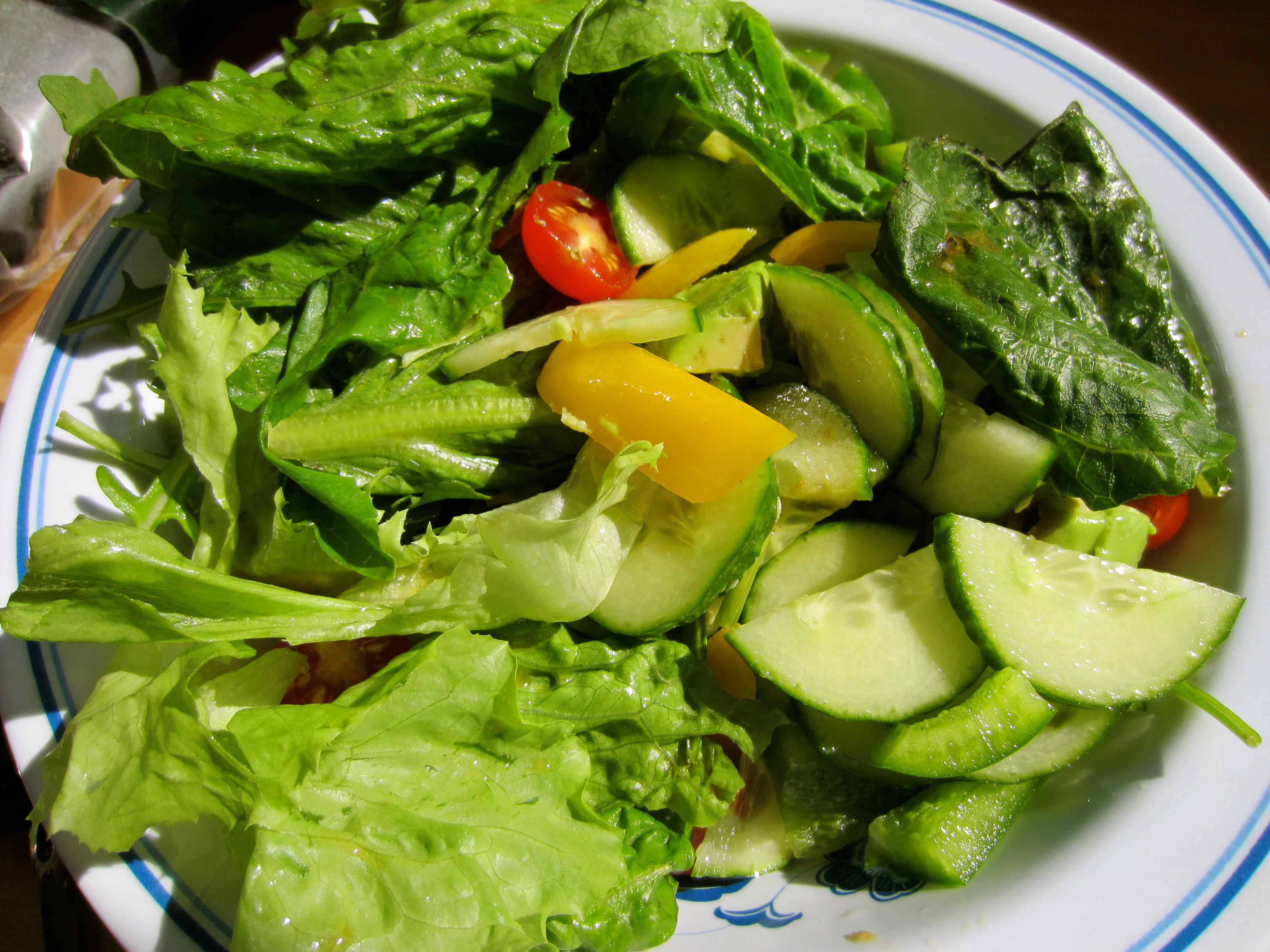 raw vegetable salad diet