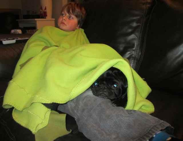 Beryl with H under blanket