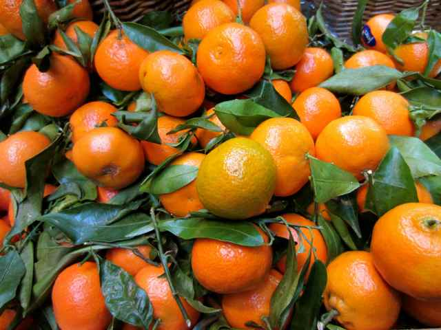 Turnip Clementines