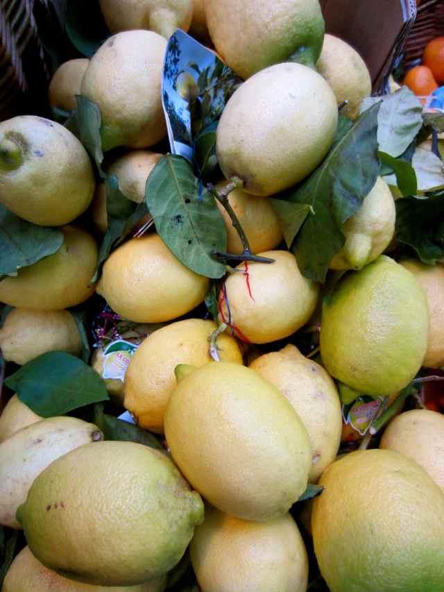 Turnip lemons