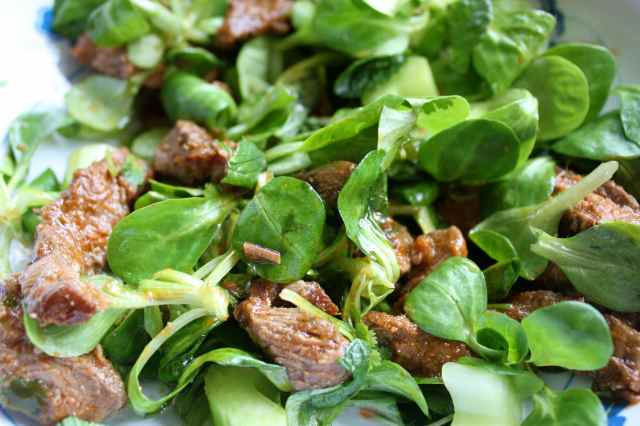 beef and green salad