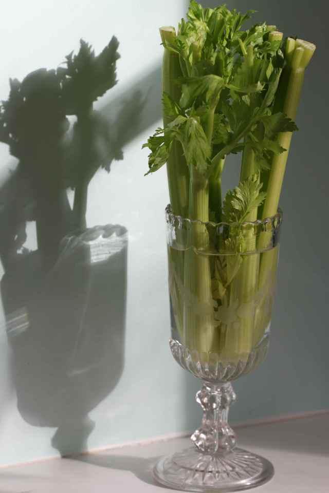 celery in glass 1