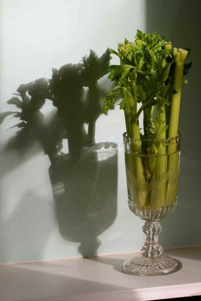 celery in glass 2