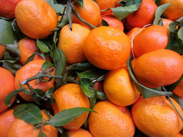 Clementines in Borough