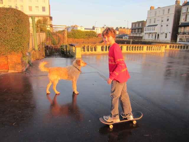 Harvey skateboarding 3