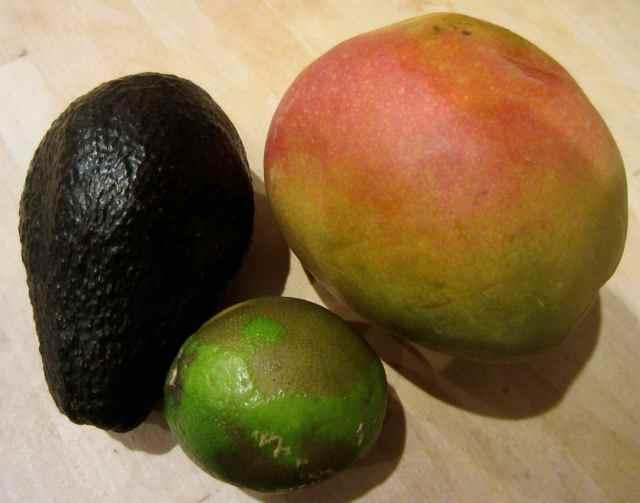 mango, lime and avocado