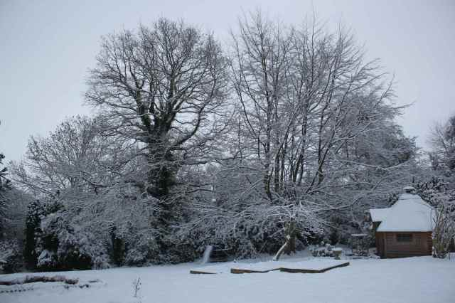 snow scene 6