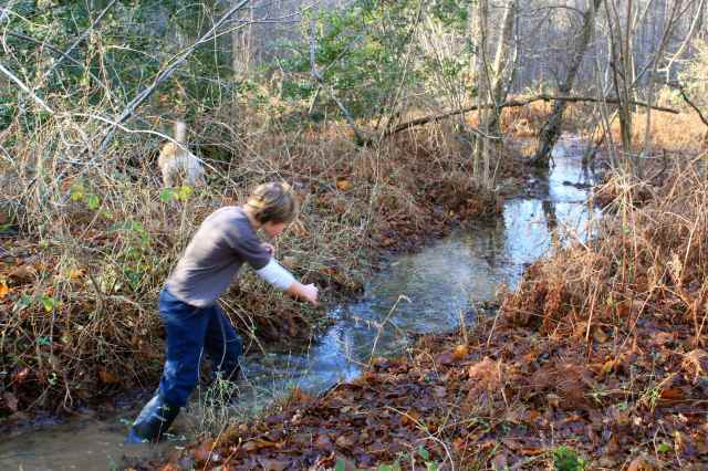 wading in stream