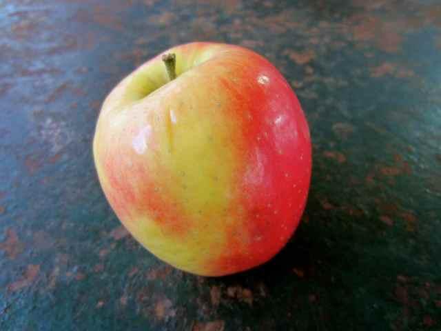 Apple 4-2-13