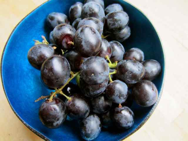 Black grapes in blue bowl