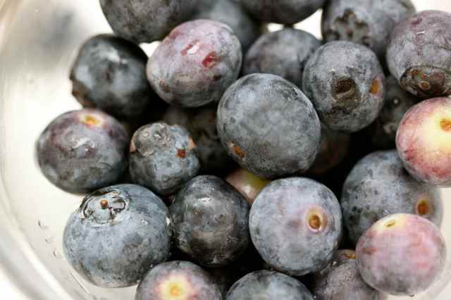 close up blueberries