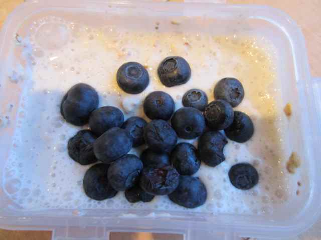 Soaked oats with blueberries