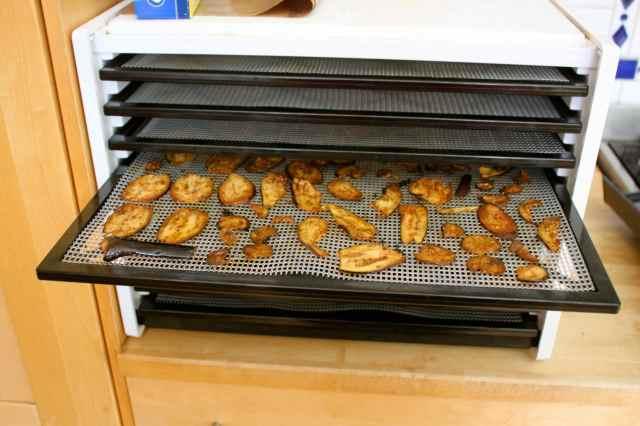aubergine crisps in dehydrator
