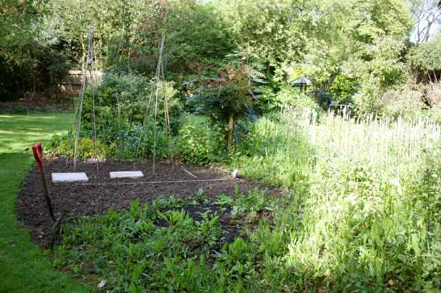 Clearing a veggie garden