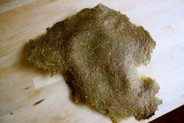 dried veg pulp