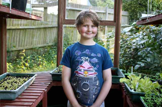H in greenhouse