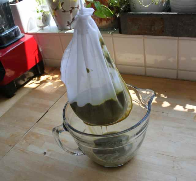 Makinf veg juice