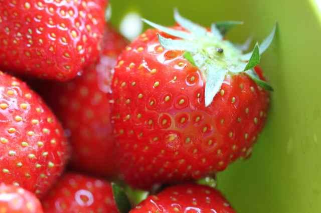 strawberries 1