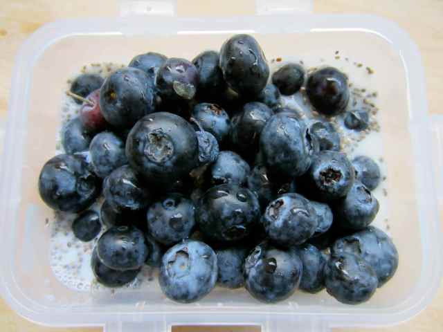 Blueberries 6-6-13