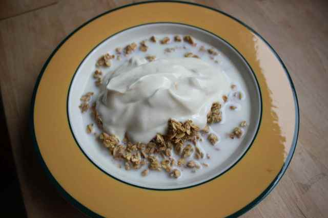 yogurt and cereal