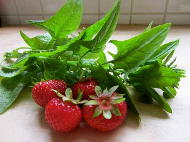 4 strawbs and spinach