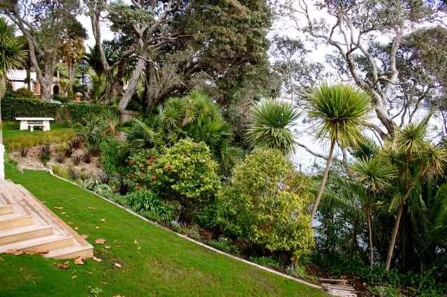 Peter's garden 2