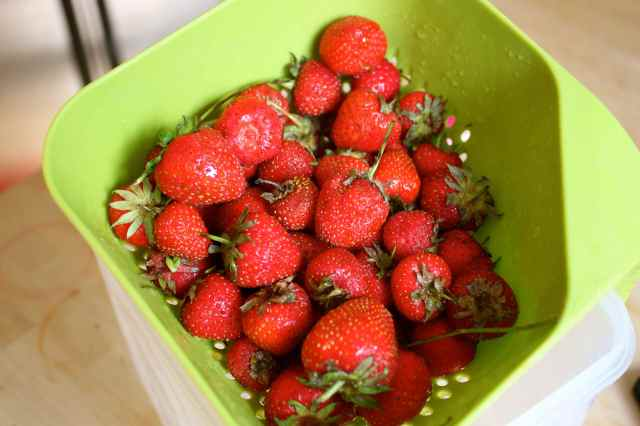 strawberries in colander