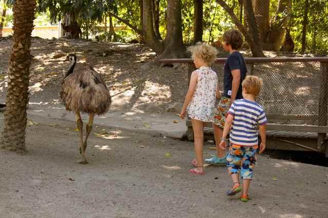 3 children and emu