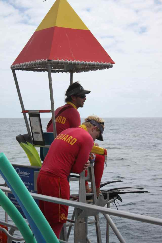 Aussie Lifeguards 1