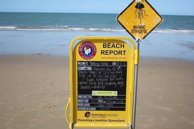 Beach report 8-8-13
