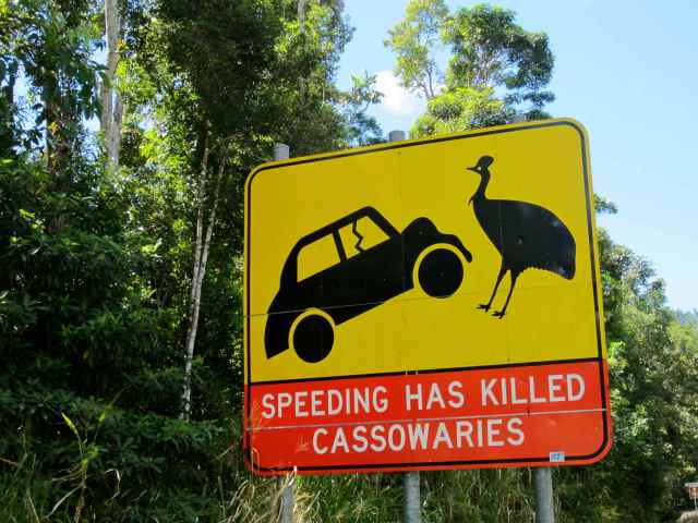 cassowaries sign