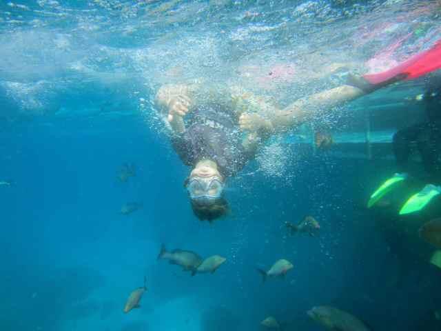 H snorkelling 5
