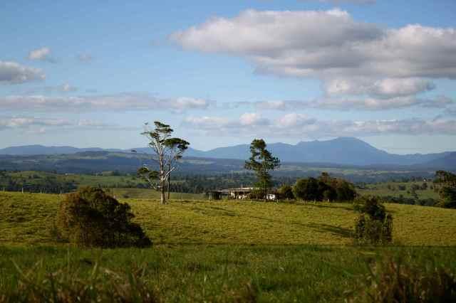 Homestead near Millaa