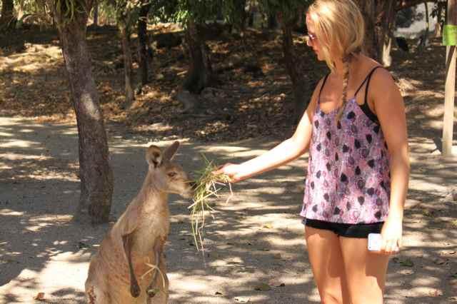 Lara and kangaroo