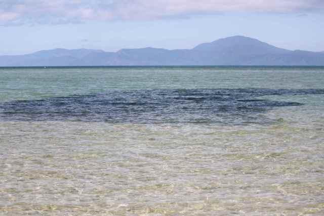 large shoal