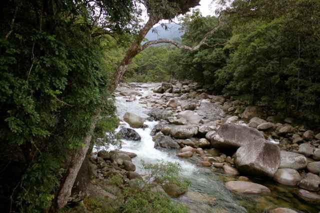 Mossman Gorge 2