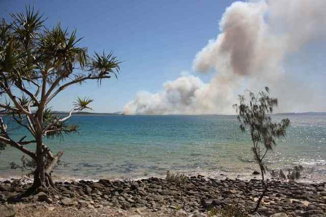Noosa fire 2