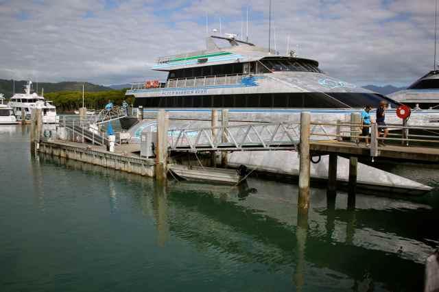 Quicksilver boat 1