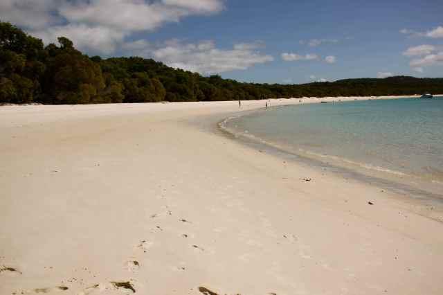 Whitsunday Beach 1