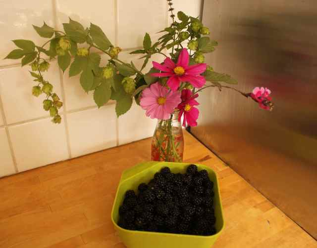 blackberries and flowers