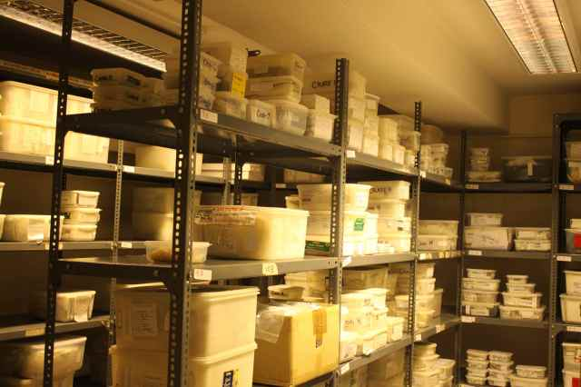 CCC archaeology storage