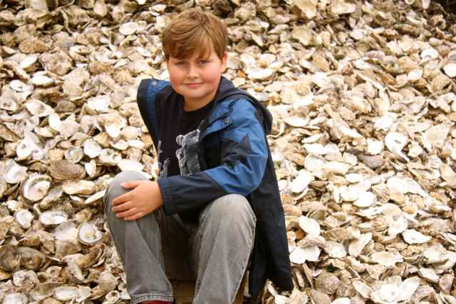 Harvey in oysters