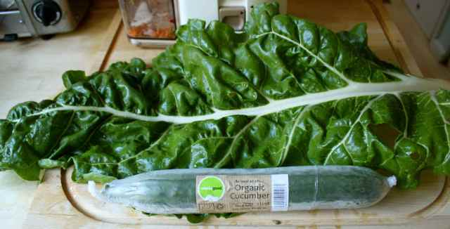 Huge Swiss chard leaf