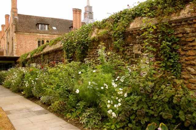 Magdalen college garden