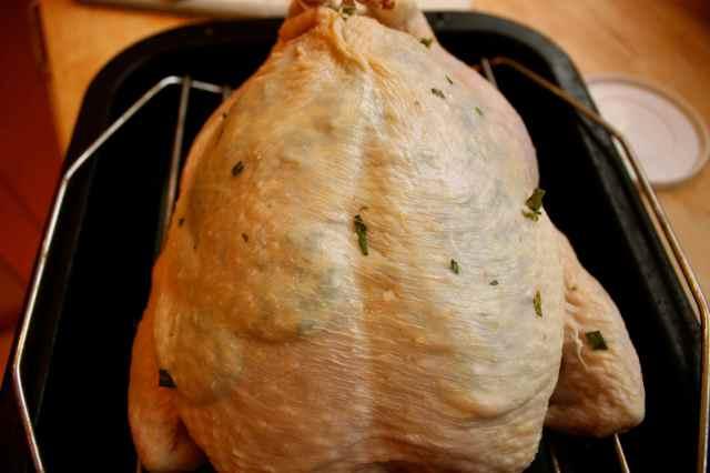 chicken with tarragon utter