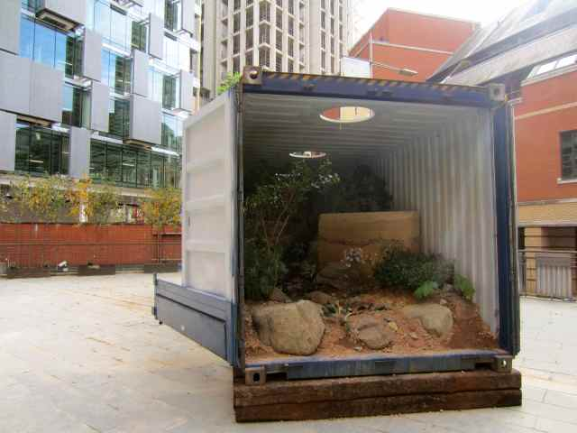 garden in container
