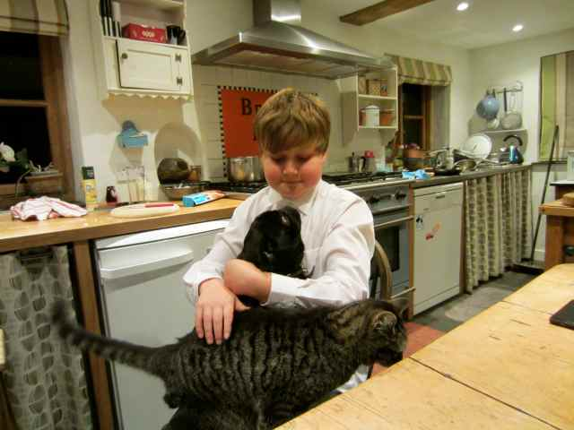 H with Beryl and cat
