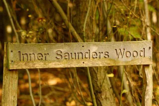 Inner Saunders Wood