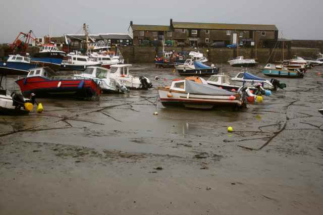 Low tide Lyme Regis