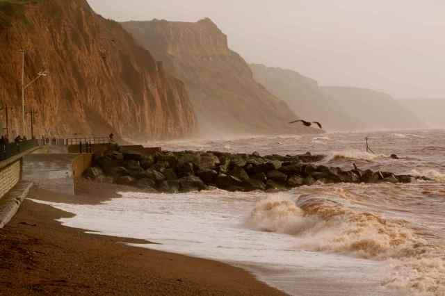 wild sea Sidmouth 2